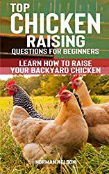 Top Chicken Raising Questions for Beginners: Learn How To Raise Your Backyard Chicken